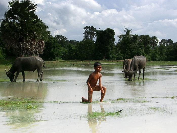 Cambodge-010